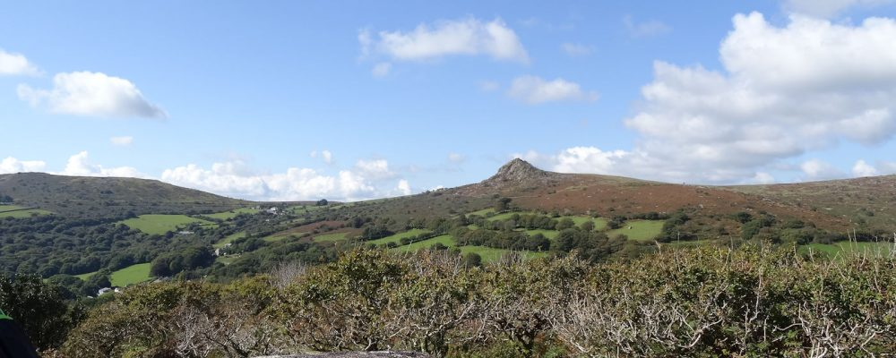 View of Sharp Tor