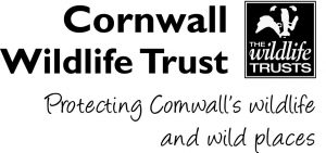 Cornwall Wildlife Trust: Protecting Cornwall's wildlife and wild places